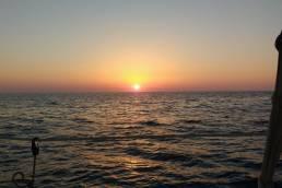 Un tomb per l'illa de Menorca